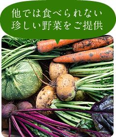 他では食べられない珍しい野菜をご提供