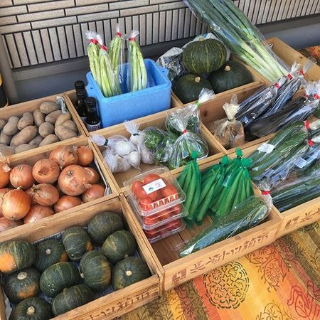 有機野菜詰め合わせセット【有機野菜ばんぶーおりぢなる】